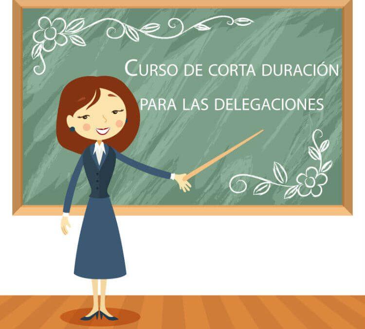 Cursos de corta duración para las delegaciones